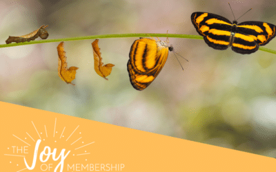 Why is Creating Change in Membership Organization so Difficult?