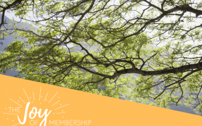 Flexibility: One Key to Success in Membership